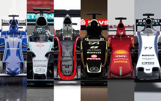 Formel 1 2015 Nasen-Check