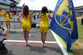 Grid Girls GP England 2015